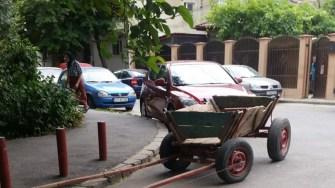 Poliția Locală a scos din circulație încă două căruțe. FOTO DGPL Constanța