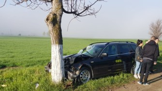 Autoturismul s-a oprit în pom. FOTO IPJ Constanța