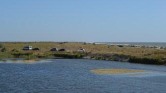Amenzi date de Administrația Rezervației Biosfera Delta Dunării pe plajele Vadu și Corbu. FOTO Cristina Niță