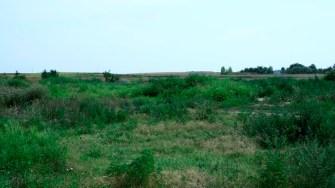 Terenul unde Primăria Hârșova va construi un parc. FOTO Cristina Niță