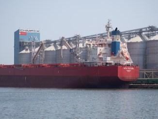 Chimpex, Portul Constanța. FOTO Chimpex