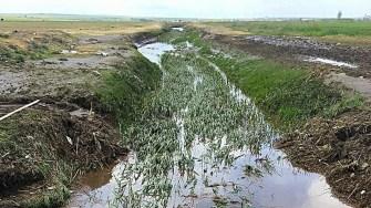 Cursul de apă a fost curățat. FOTO Bogdan Bola
