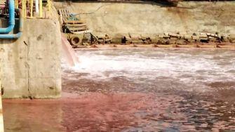 Șantierul Naval Damen Mangalia, amendat pentru poluarea docurilor de reparații. FOTO Sindicatul Liber Navalistul
