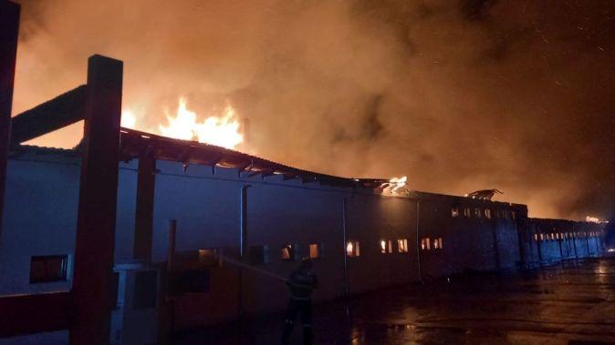 Incendiu de proporții la o fabrică de pâine din localitatea Satu Nou. FOTO ISU Dobrogea