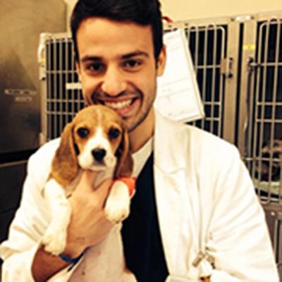 Dott. Maurizio Longo