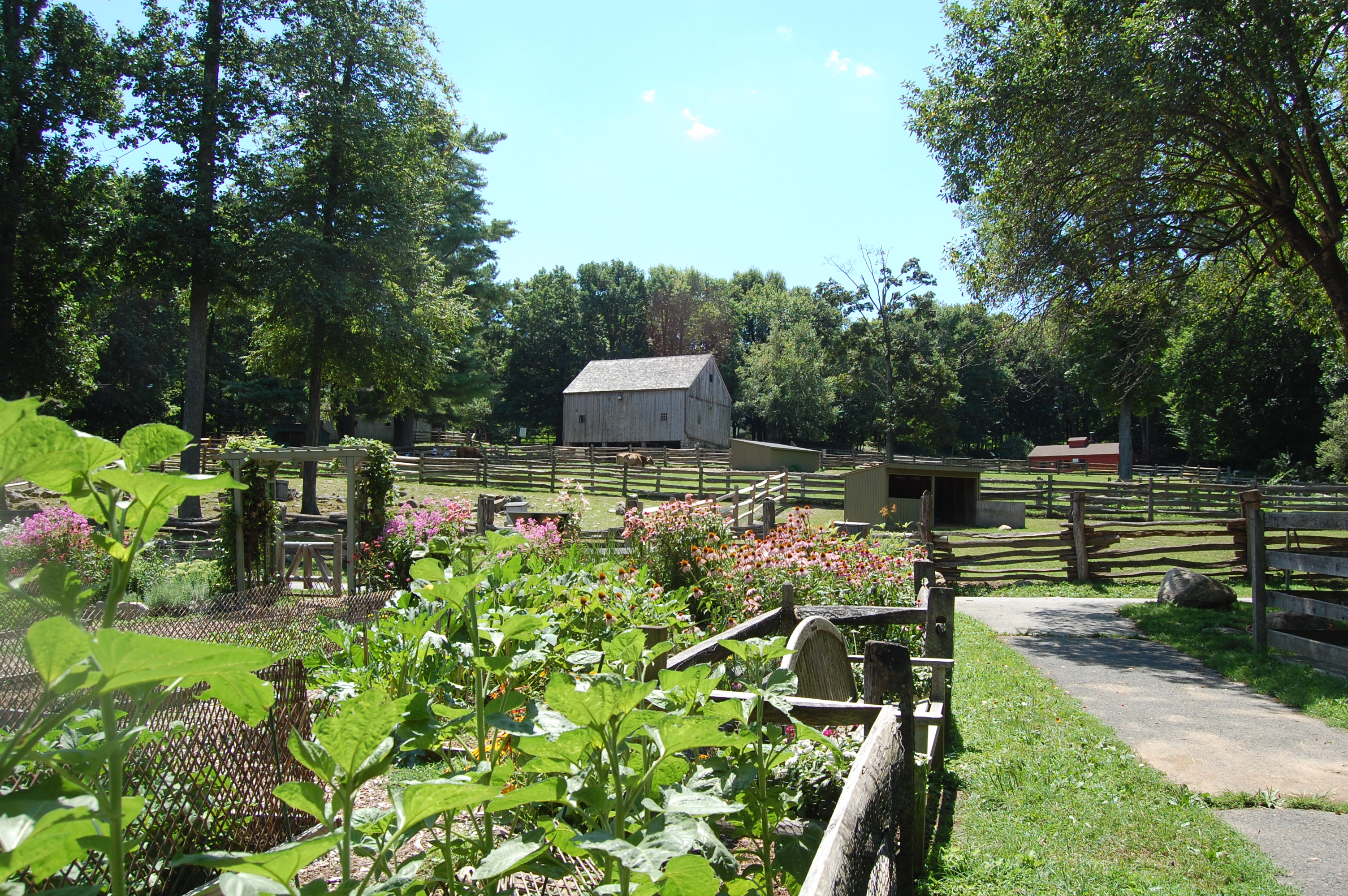 Image result for stamford museum and nature center free pictures