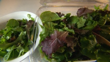 Parasites found in pre-washed packages of lettuce