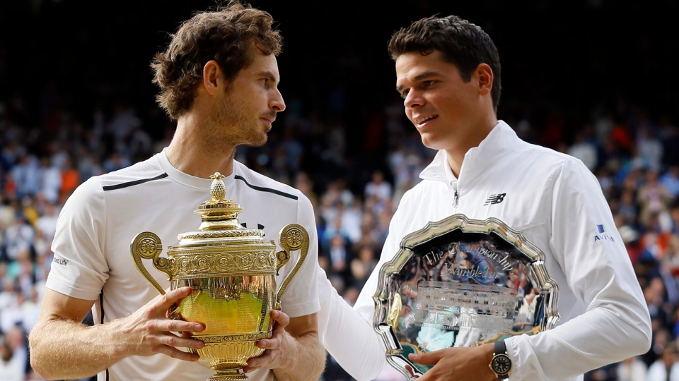 Image result for raonic andy murray