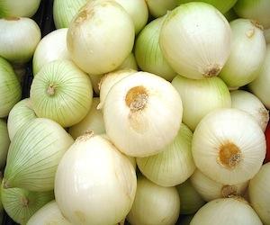 cebolla1