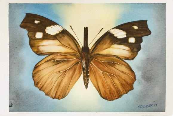 Las Mariposas De Antonio Guerrero Vuelan De Florence A La
