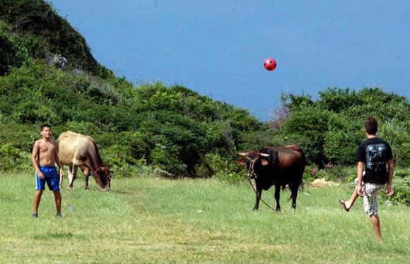 Futbol campestre... Foto: Ismael Francisco