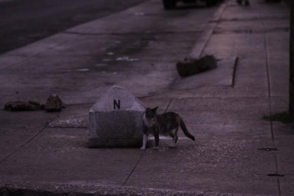 Transeúnte en esquina. Foto: Móncia Rivero/Cubadebate