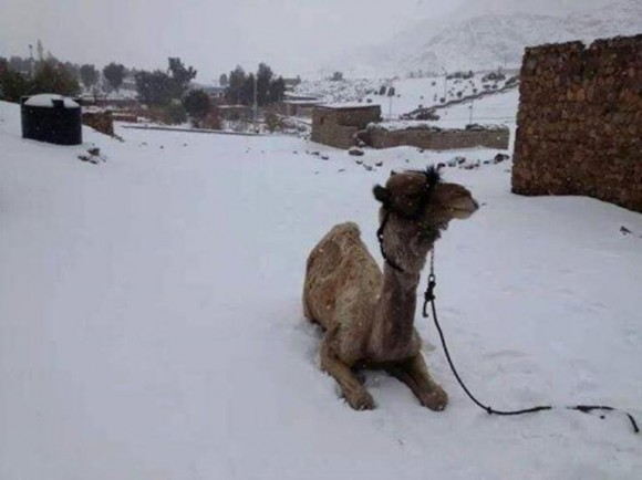 egipto nieve