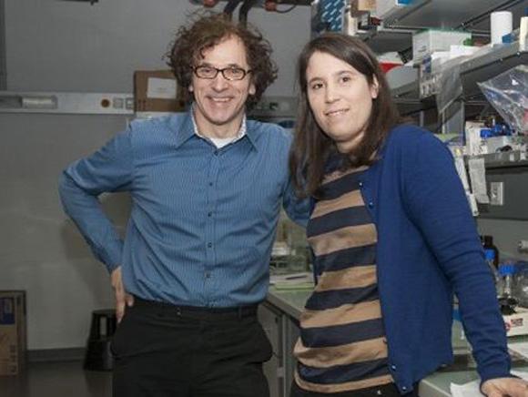 Magdalena Paolino, junto a su jefe, Josef Penninger, en el laboratorio del Institute of Molecular Biotechnology de Austria. Foto: AFP.