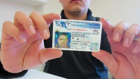 Licencias-inmigrantes estados unidos