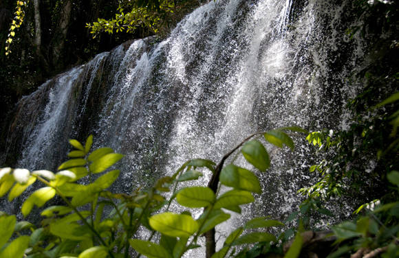 5 de Junio, Día Mundial del Medio Ambiente. Foto: Ladyrene Pérez/Cubadebate.