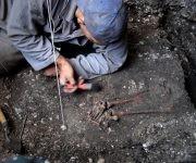 Arqueólogo cubano. Foto: Elio Miranda