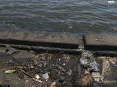 Polución y suciedad en la Bahía de La Habana (foto: Jeffrey Martin, 2008)