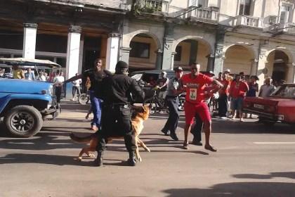 El perro azuzado contra el civil