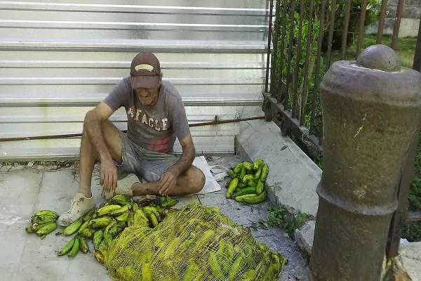 Raúl  viene a buscar alimentos al contenedor de basura de Tte. Rey y Villegas (foto del autor)