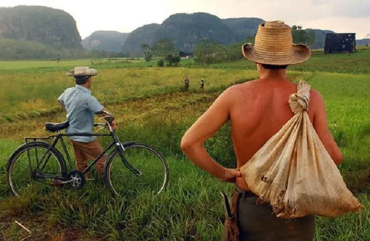 Cuba, Campesino, tierras
