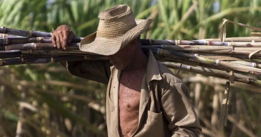 industria azucarera Cuba