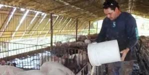 Concluye para sentencia juicio a productor de carne en Las Tunas