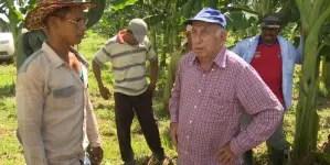 """La ganadería en Cuba """"no anda nada bien"""", asegura Machado Ventura"""
