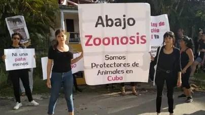 Protectores independientes protestan contra el maltrato animal en Cuba