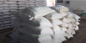 Policía de Camagüey ocupa 53 sacos de azúcar robados de una fábrica de fideos