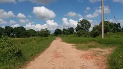 Denuncian violación de una adolescente de 15 años en Camagüey
