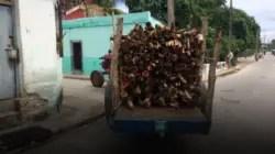 Cocinar con leña, la opción para sobrevivir en Cuba