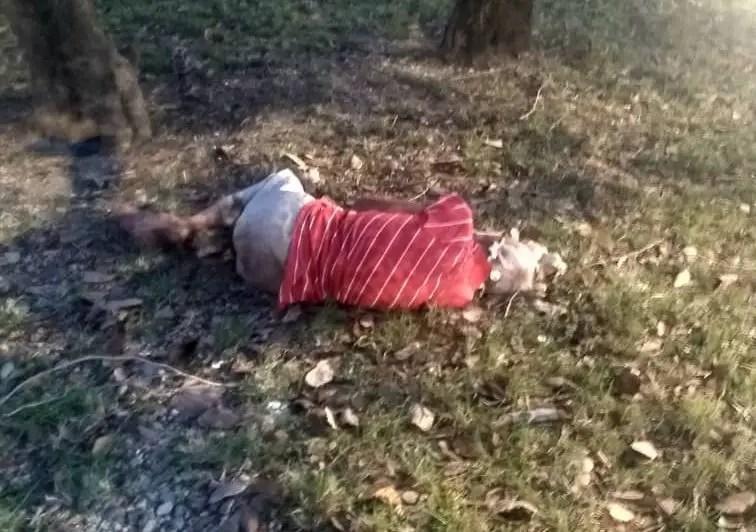 hombre vejez Cuba muerto