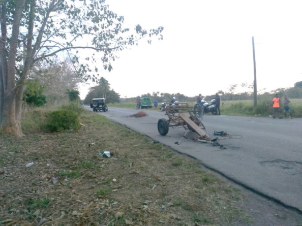 Caballo desbocado impacta contra un automóvil en La Habana