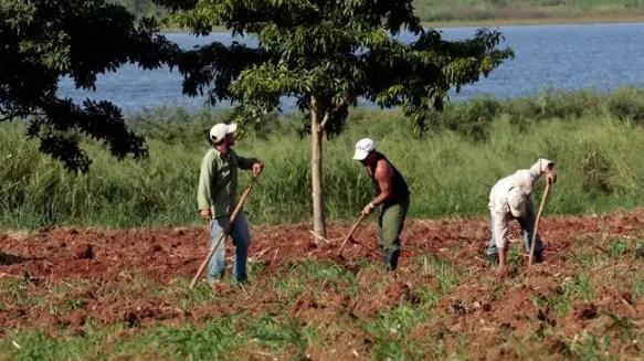 ¿Será posible el rescate de las cooperativas agropecuarias?