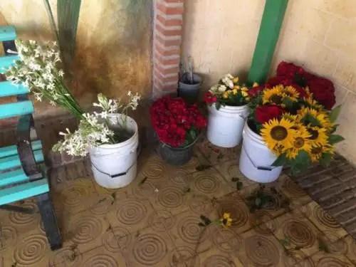 Floristería privada La Plazuela