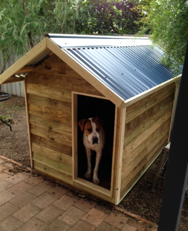 dog kennel 1.8m x 1.2m, gable roof $570