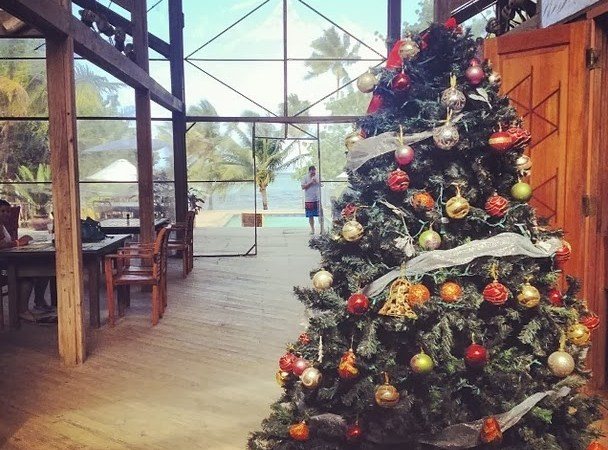 'Home Alone' and Coconut Rum: An Expat Christmas