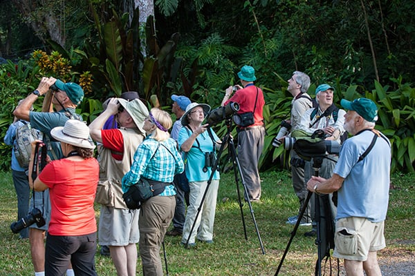 Natural History Programs – Western Cuba: 2018 & 2019