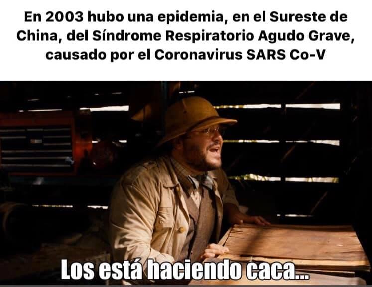 coronavirus historia