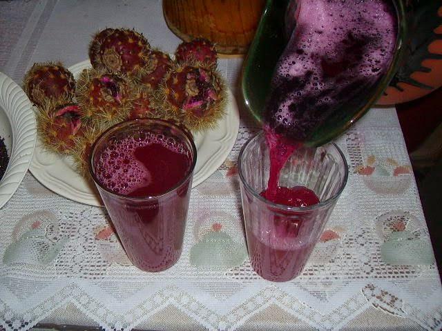 Nochocle bebida tipica de San Luis Potosi
