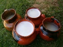pulque-bahuas-bebidas