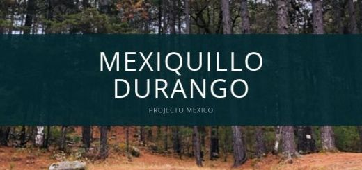 Mexiquillo Durango