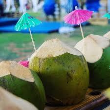 cocos frios bebidas de baja california sur