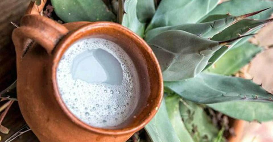 El Pulque de Huitzilac morelos bebidas
