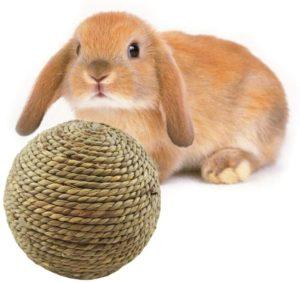 Toy-Ball-Natural-Grass-Ball-juguetes-conejos