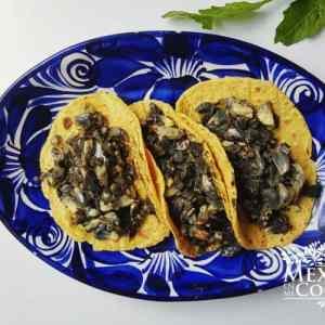 Huitlacoche gastronomia con insectos de mexico