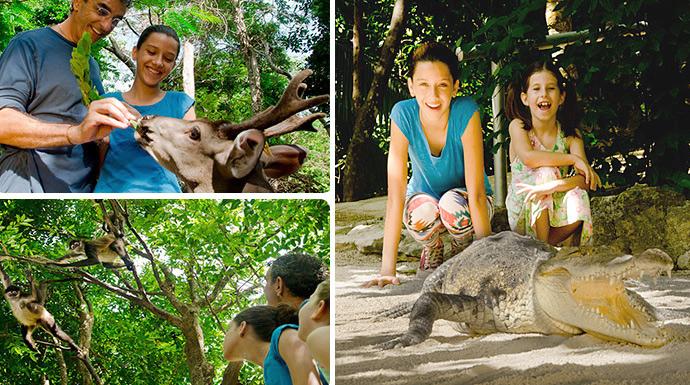 Crococun parques cancun para toda la familia