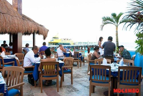Mocambo restaurantes de mariscos en cancun