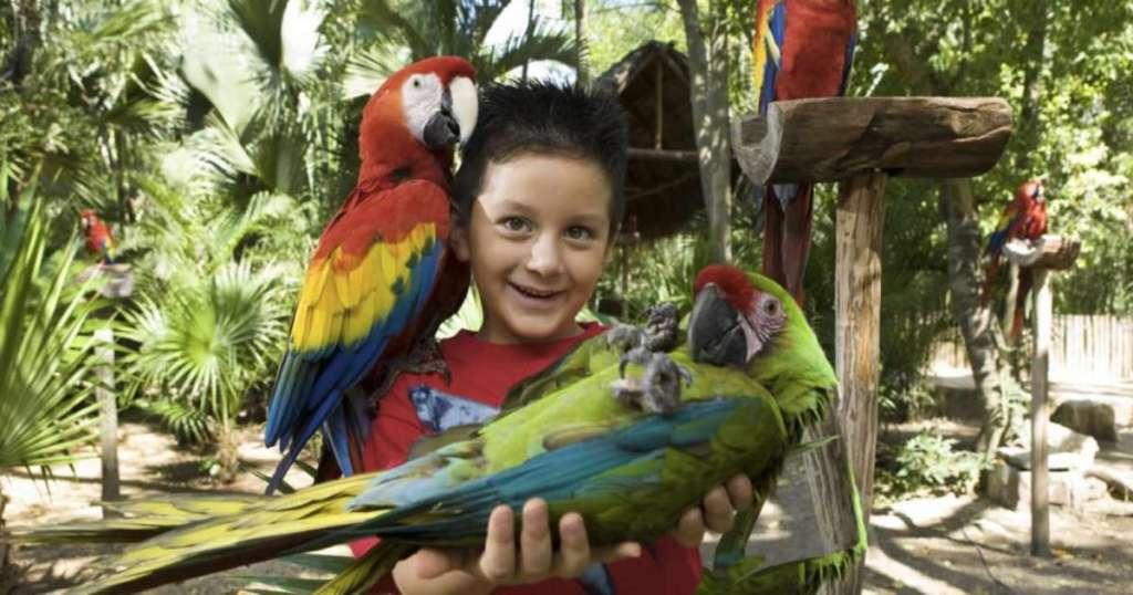 Parques en Cancun para niños